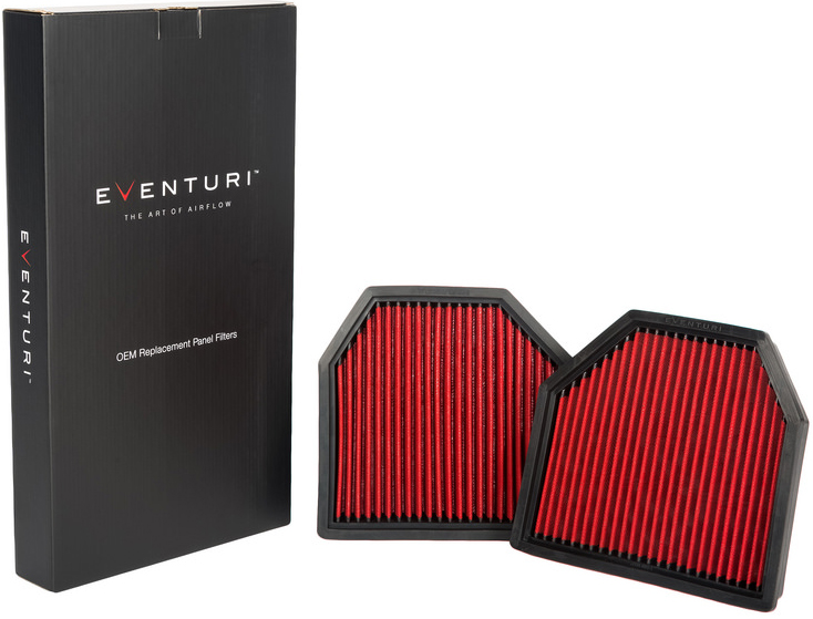 Eventuri Panel Filter for BMW M3 M4 M5 M6 F8X F10 F1X