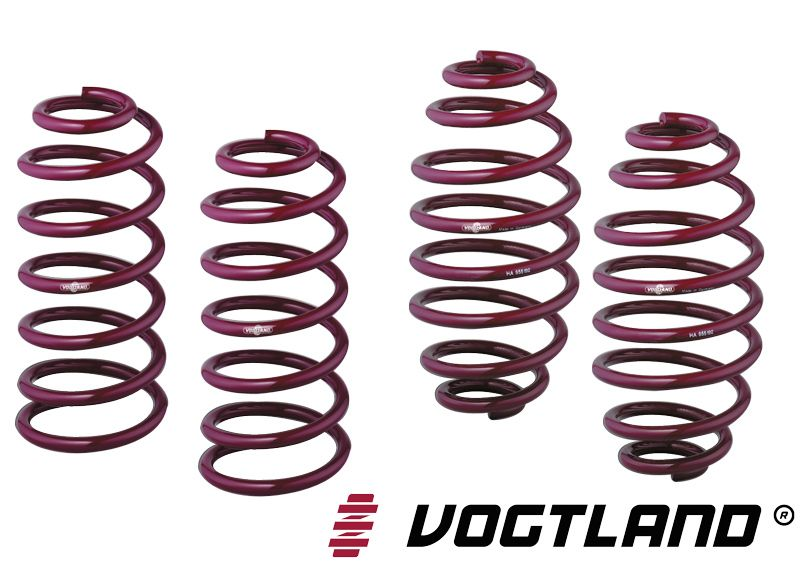 Vogtland Sport Springs for 2014+ Ford Fiesta ST